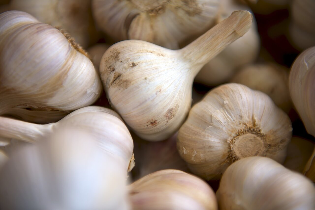 20 reasons to eat garlic
